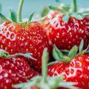 Продукты, которые можно есть без страха набрать вес