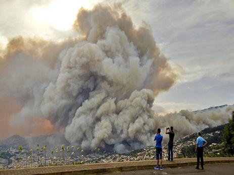 Число погибших в лесных пожарах в Португалии достигло 43