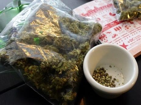 В Мексике вступил в силу закон о легализации медицинской марихуаны