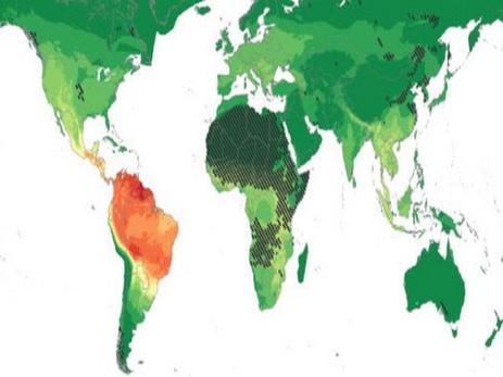 Ученые: Южная Америка таит угрозу здоровью человечества
