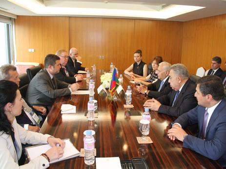 Председатель Милли Меджлиса: Азербайджан и Чехия дружественные страны и партнеры