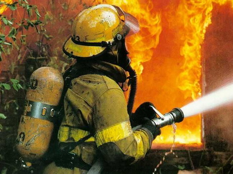 В Ширванском национальном парке произошел пожар