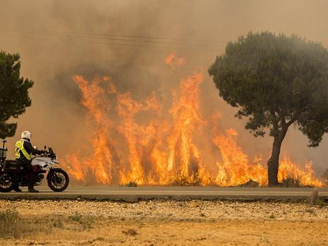 На юго-западе Испании почти 400 человек эвакуировали из-за лесного пожара