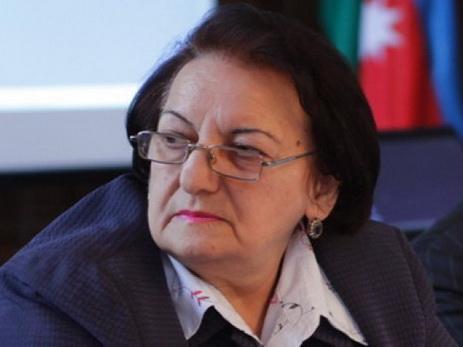 Эльмира Сулейманова выступила с заявлением в связи с убийством ВС Армении мирных азербайджанских граждан