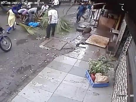 Телеведущую убило деревом после месяцев борьбы за его вырубку — ВИДЕО