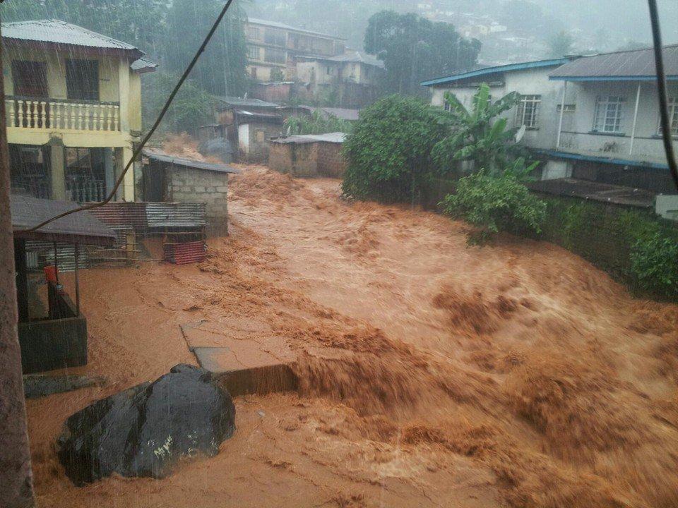 В Сьерра-Леоне 312 человек погибли из-за схода оползня