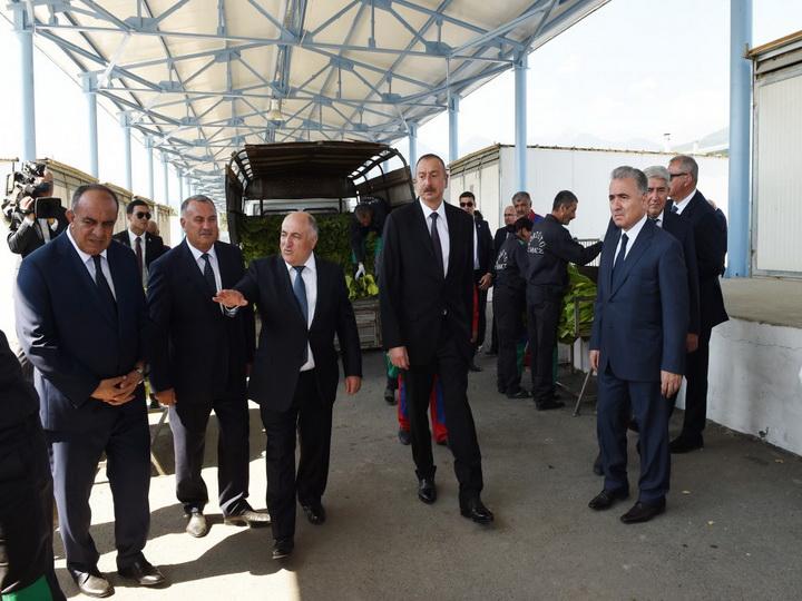 Ильхам Алиев ознакомился с условиями, созданными в пункте приема табака - ФОТО