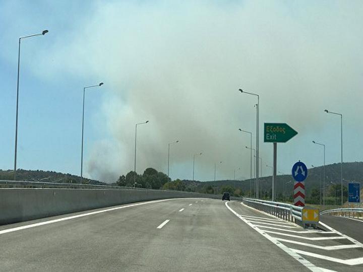 Власти Греции заявили о спланированных массовых поджогах лесов в стране