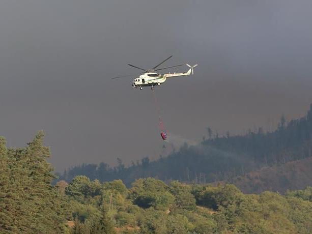 МЧС Азербайджана направило дополнительные силы для тушения пожаров в Грузии