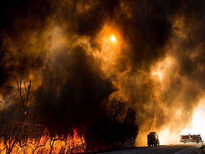 В округе Лос-Анджелес ввели режим ЧС из-за природных пожаров