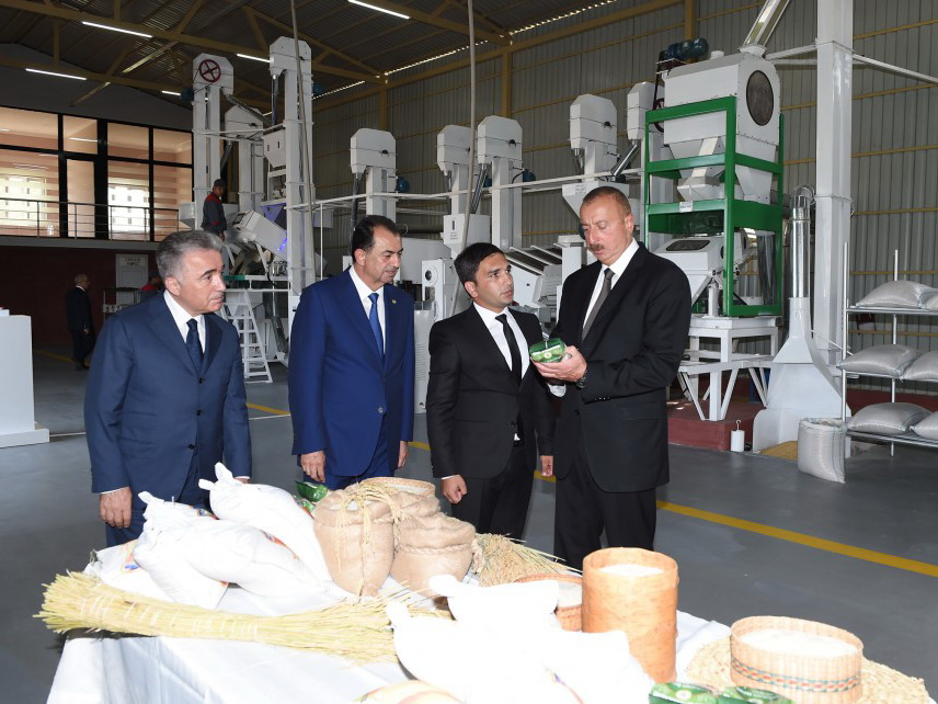Возрождение сельского хозяйства: новая страница в истории рисоводства в Азербайджане