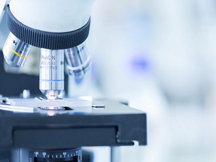 Ученые обнаружили новые «неуязвимые» формы жизни