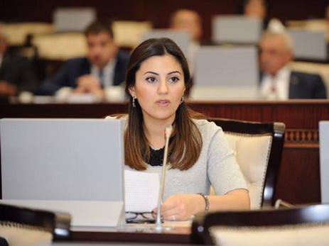 Севиндж Фаталиева: Выступление Президента Ильхама Алиева на Генассамблее ООН было блестящим с точки зрения защиты национальных интересов