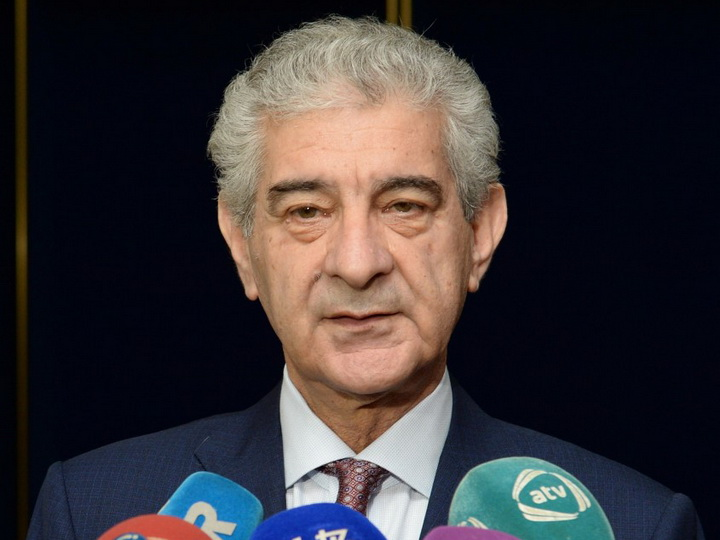 Али Ахмедов: Подчеркивание факта освобождения от оккупации азербайджанских земель – успех нашего государства