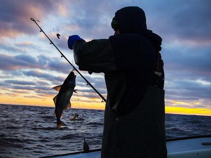 В связи с незаконным ловом рыбы к ответственностипривлечены 120 человек
