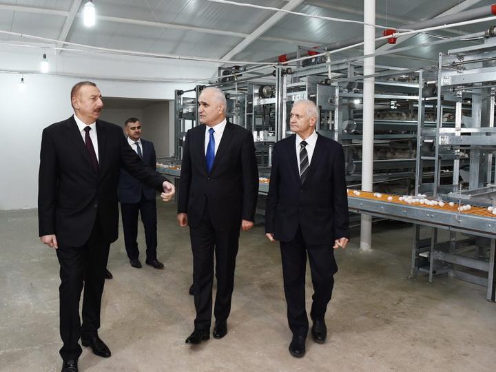 Президент Азербайджана ознакомился с деятельностью птицеводческой фабрики в Сабирабаде — ФОТО