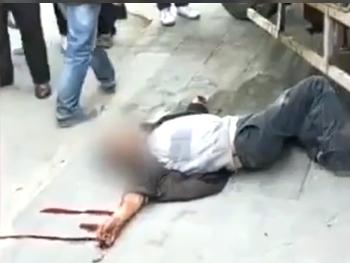Сбежавший из цирка тигр ранил двух человек в Китае — ВИДЕО