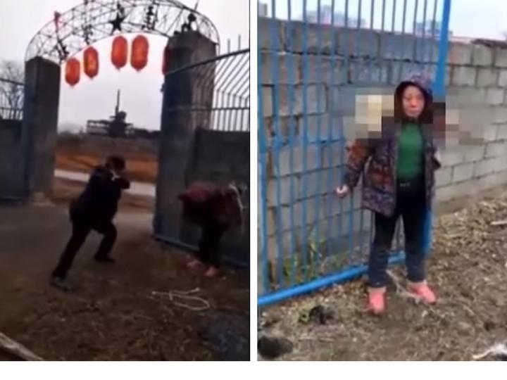 Вот как в Китае наказывают живодёров – ВИДЕО