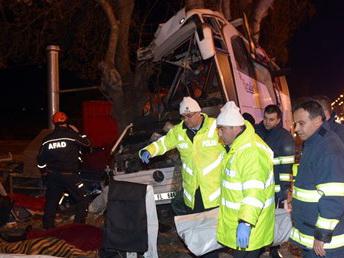 В Турции водитель автобуса совершил маневр, чтобы не сбить собаку, есть - ФОТО