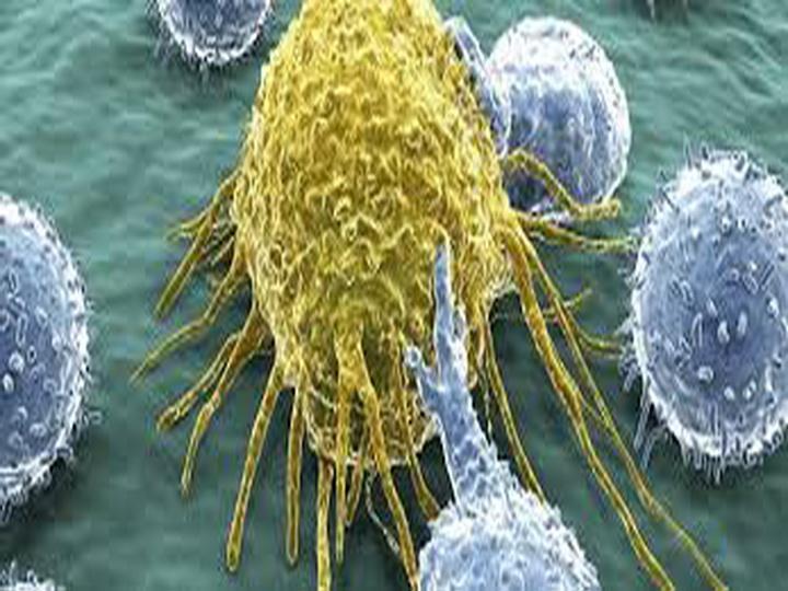 Учёные нашли новый способ ранней диагностики рака