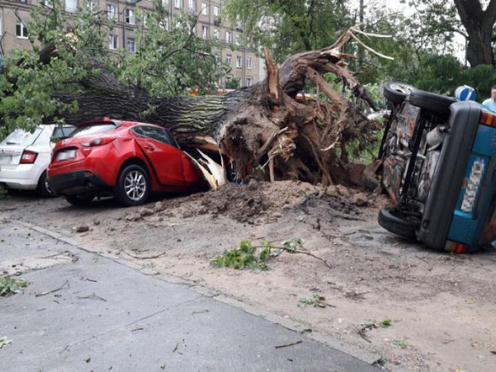 Во Франции в результате урагана «Элеанор» погибли шесть человек