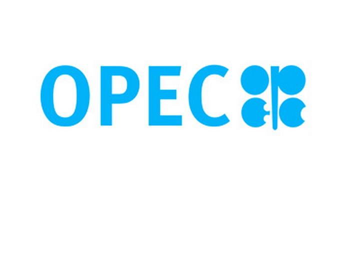 OPEC разработает механизм постоянного сотрудничества с нефтедобывающими странами