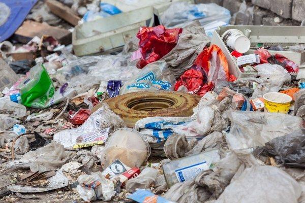 Жители Подмосковья вышли на митинг против мусорного полигона