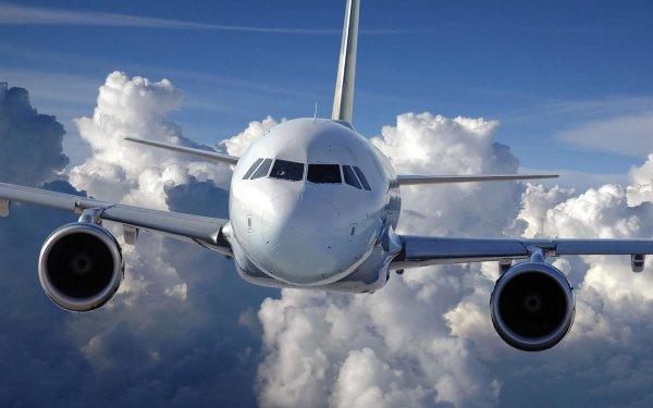 Стала известна причина сокращения на 25% числа планируемых авиарейсов в Крым