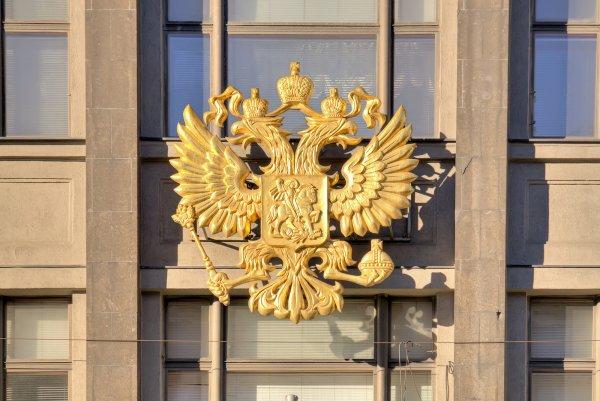 Астраханец попал под суд за пост с гербом РФ