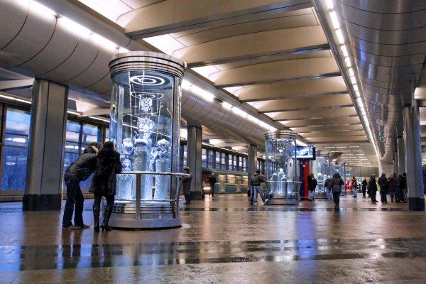 В Москве временно прекратила работать станция метро «Воробьевы горы»