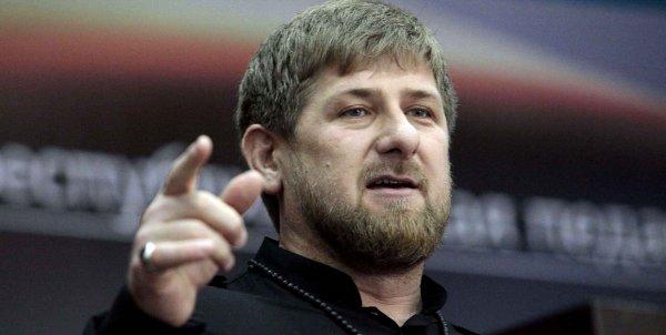 Кадыров объяснил, откуда у него теплицы под Петербургом