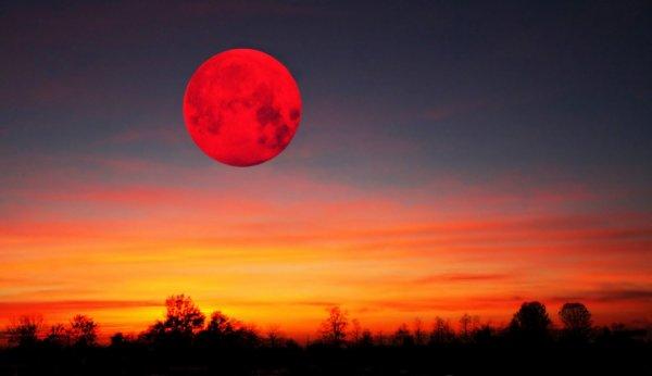 Жители Петербурга скупили все билеты на просмотр кровавой Луны