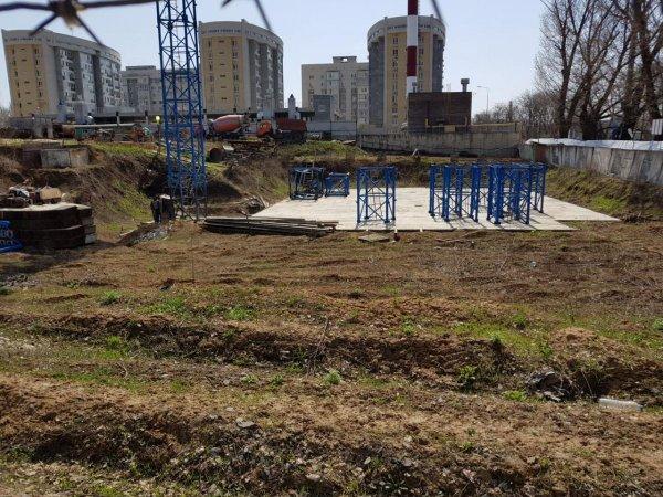 В Александровской роще организовывают экологический митинг