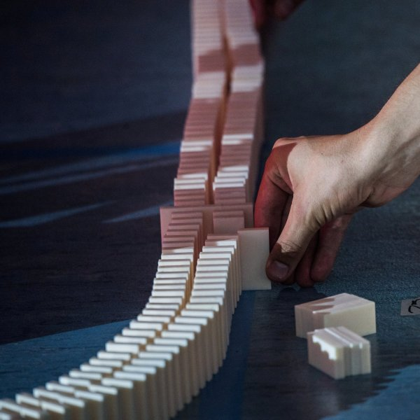 Муха помешала представителям Германии установить мировой рекорд