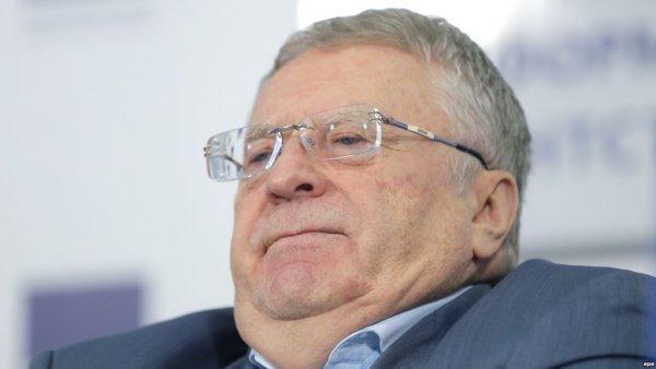 Жириновский остановит «утечку мозгов» за границу, отменив изучение английского языка