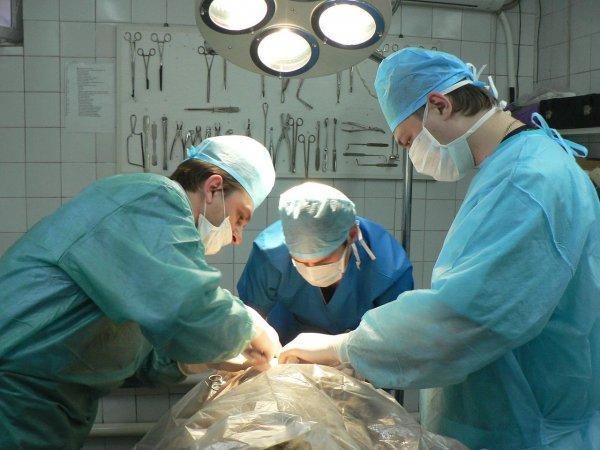Московские медики удалили пациенту опухоль в животе весом более 20 кг