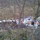 Саратовские чиновники «отфотошопили» мусорник