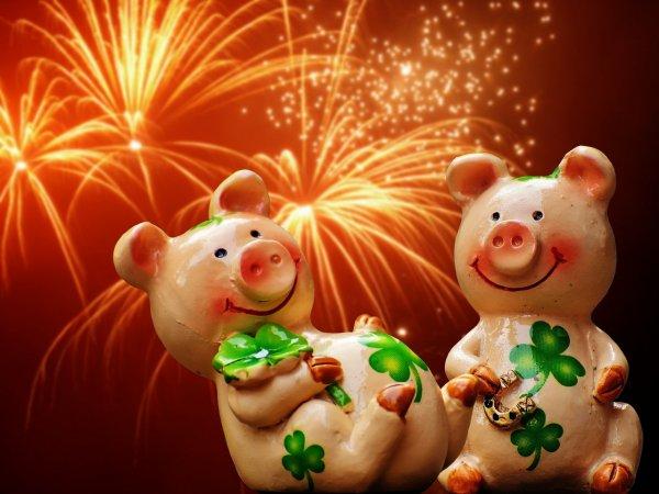 Как правильно встречать Новый Год Желтой Земляной Свиньи