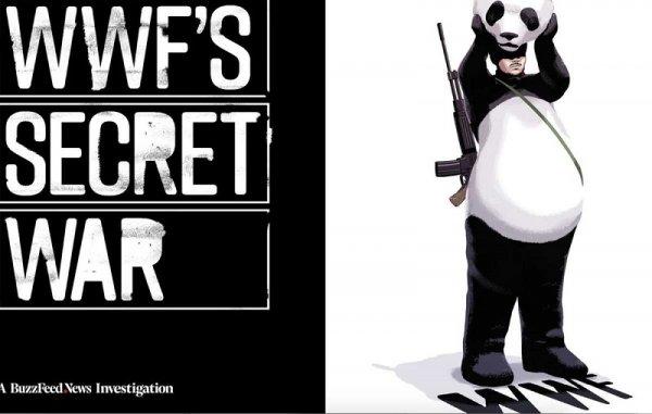 Эскадроны смерти WWF