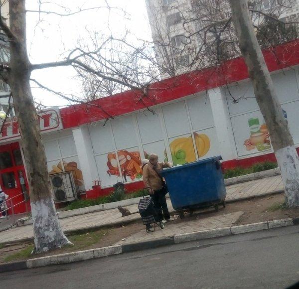 Прости, пенсионер!: «Магнит» вынуждает стариков рыться в мусорках ради крошки хлеба - очевидец