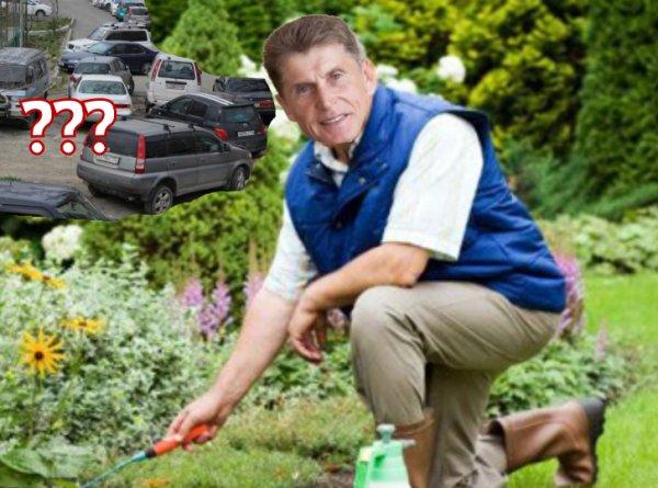 Лучше буду садовником: Кожемяко решает проблемы Владивостока посадками цветов
