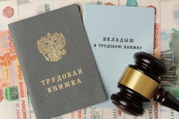 Россиянам оцифровали трудовые книжки — будущее наступило?