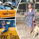Тариф «Гуманизм»: Водитель «Яндекс.Такси» отказался от слепого пассажира с собакой-поводырём