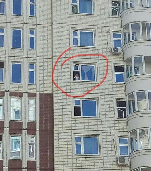 «Детопад» вновь усиливается — Неадекватная мамаша «проветрила» ребенка из окна 8-го этажа