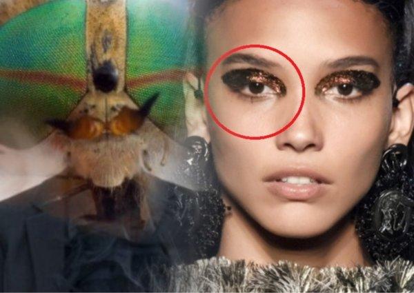 Простушки не «въедут»: Макияж насекомого станет грандиозным трендом лета - визажисты