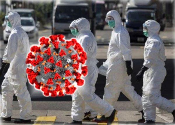 Самое актуальное о коронавирусе по состоянию на 19 мая