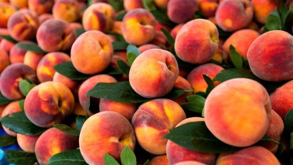 Качественные саженцы персиков